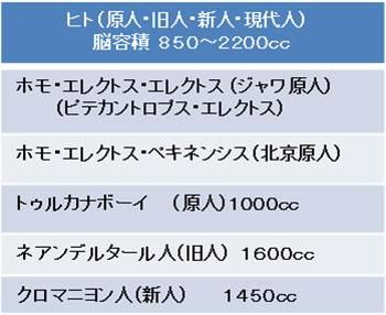 chukangata_kaseki_4.jpg
