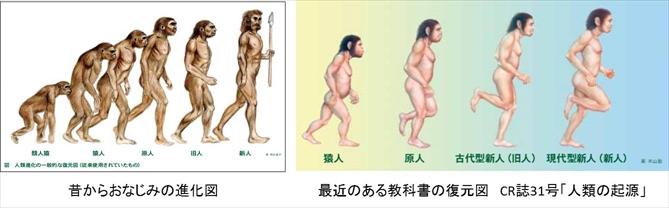 chukangata_kaseki_6.jpg