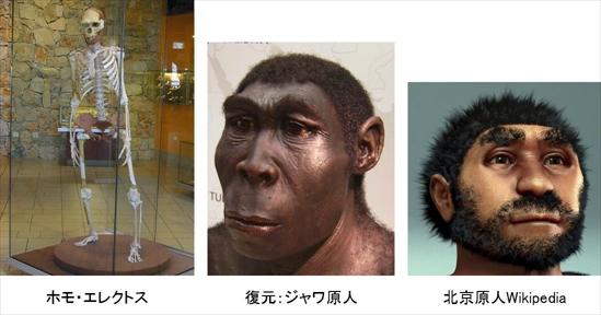 chukangata_kaseki_9.jpg