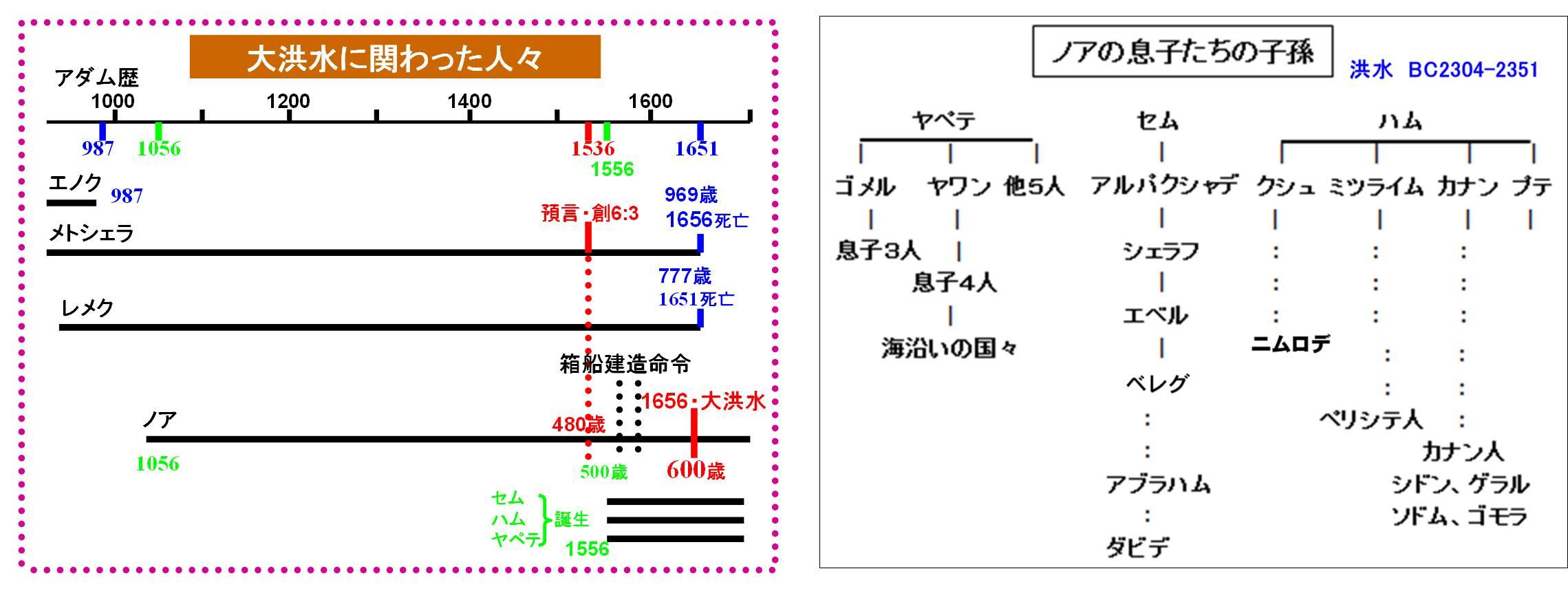noah_11_2.jpg