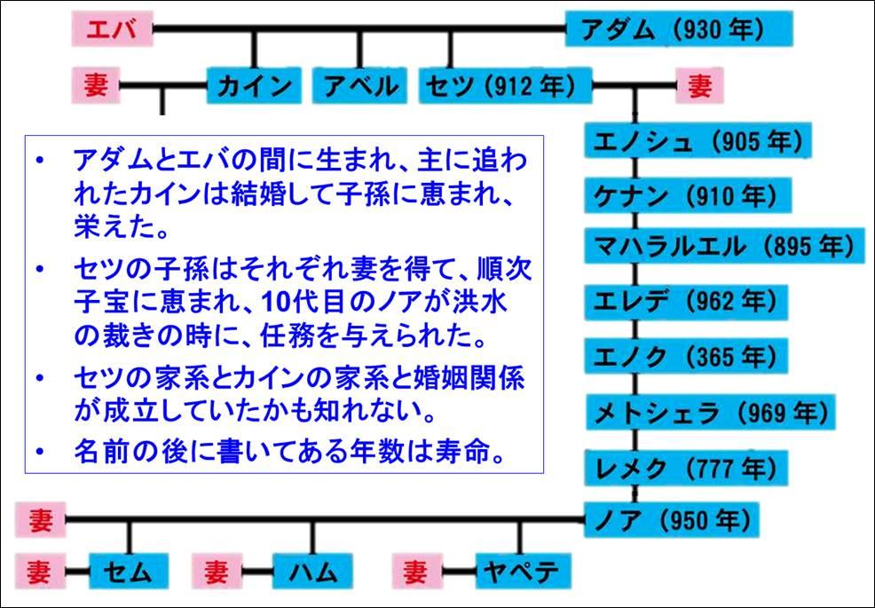 noah_6_1.jpg