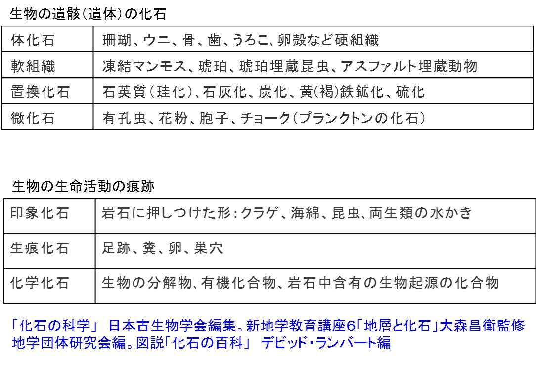 noah_9_7.jpg