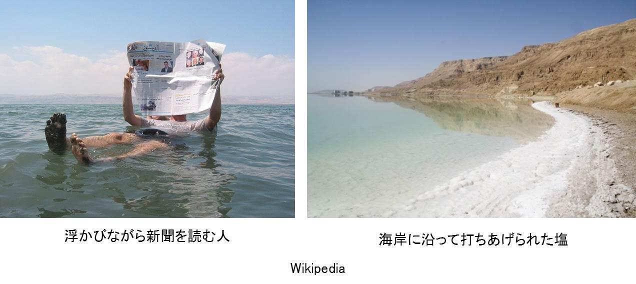 umi_daichi_11.jpg