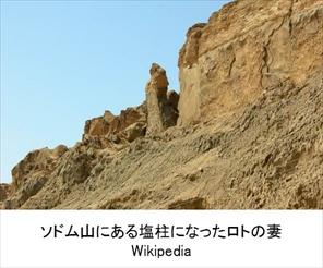 umi_daichi_12_re.jpg
