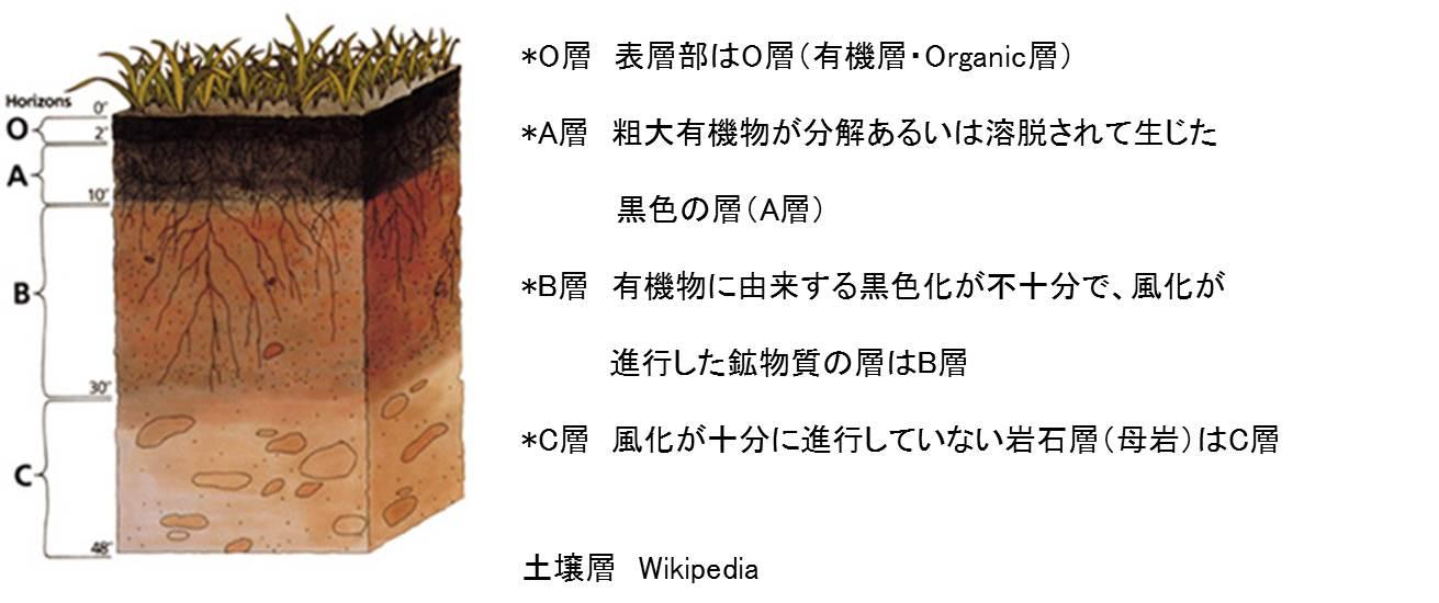 umi_daichi_6.jpg